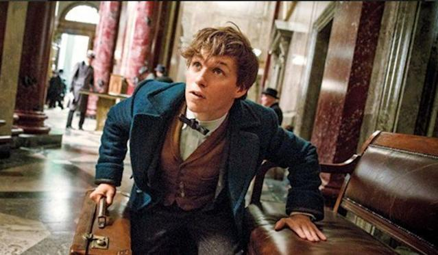 'Fantastic Beasts 2' opens casting for a young Newt (Photo: Warner Bros)