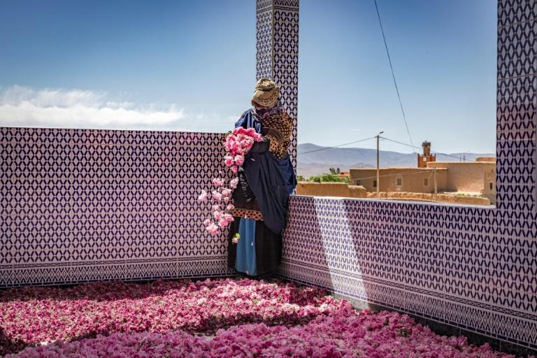 A worker spreads rose petals outside a house in the city of Kelaat Mgouna; a kilo of essential oils requires between four to five tons of flowers