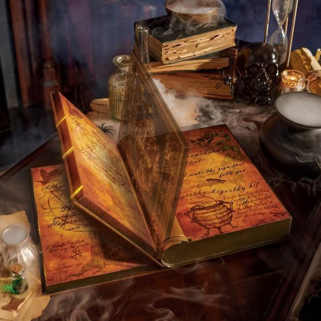 <p>Beware of the spells you read out of this <span>Animated Book of Spells</span> ($50).</p>