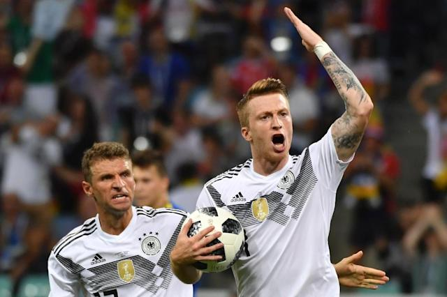 Germany forward Marco Reus (right) celebrates his goal against Sweden in Sochi (AFP Photo/Nelson Almeida)