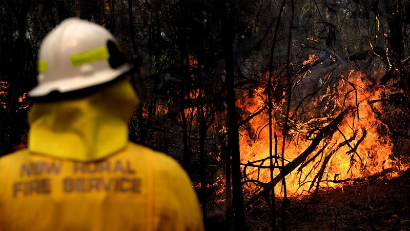Pictured is a firefighter battling a bushfire in NSW. Source: AAP
