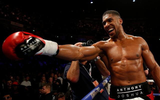 <span>Anthony Joshua defended his IBF World Heavyweight Title against Eric Molina</span> <span>Credit: Reuters </span>