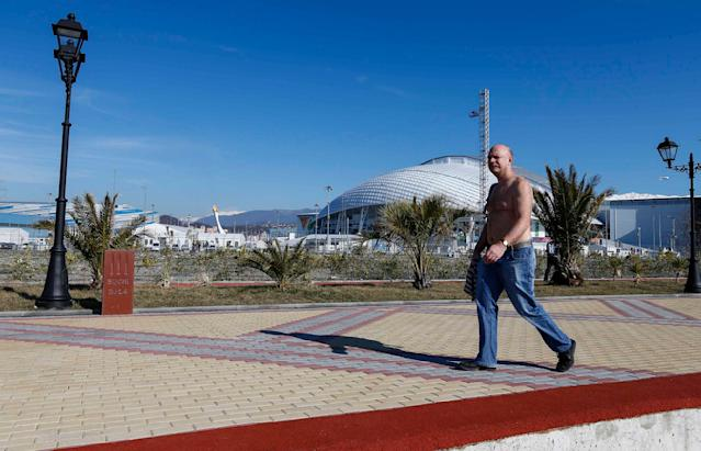 A man enjoys a sunny day as the Olympic Cauldron and flame are seen in the Olympic Park, during the 2014 Winter Olympic Games in Sochi February 12, 2014. REUTERS/Shamil Zhumatov (RUSSIA - Tags: SPORT OLYMPICS ENVIRONMENT)
