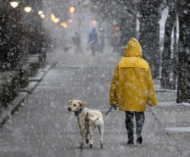 <p>A woman walks her dog in heavy snow in Hoboken, N.J., March 7, 2018. (Photo: Seth Wenig/AP) </p>