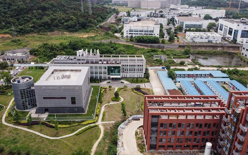 The campus of the Wuhan Institute of Virology - AFP