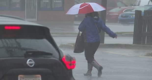 Significant rain is in the forecast for southwestern Ontario Sunday evening. Between 30 and 50 mm could fall before Monday morning, said Environment Canada.  (Brian Higgins/CBC - image credit)