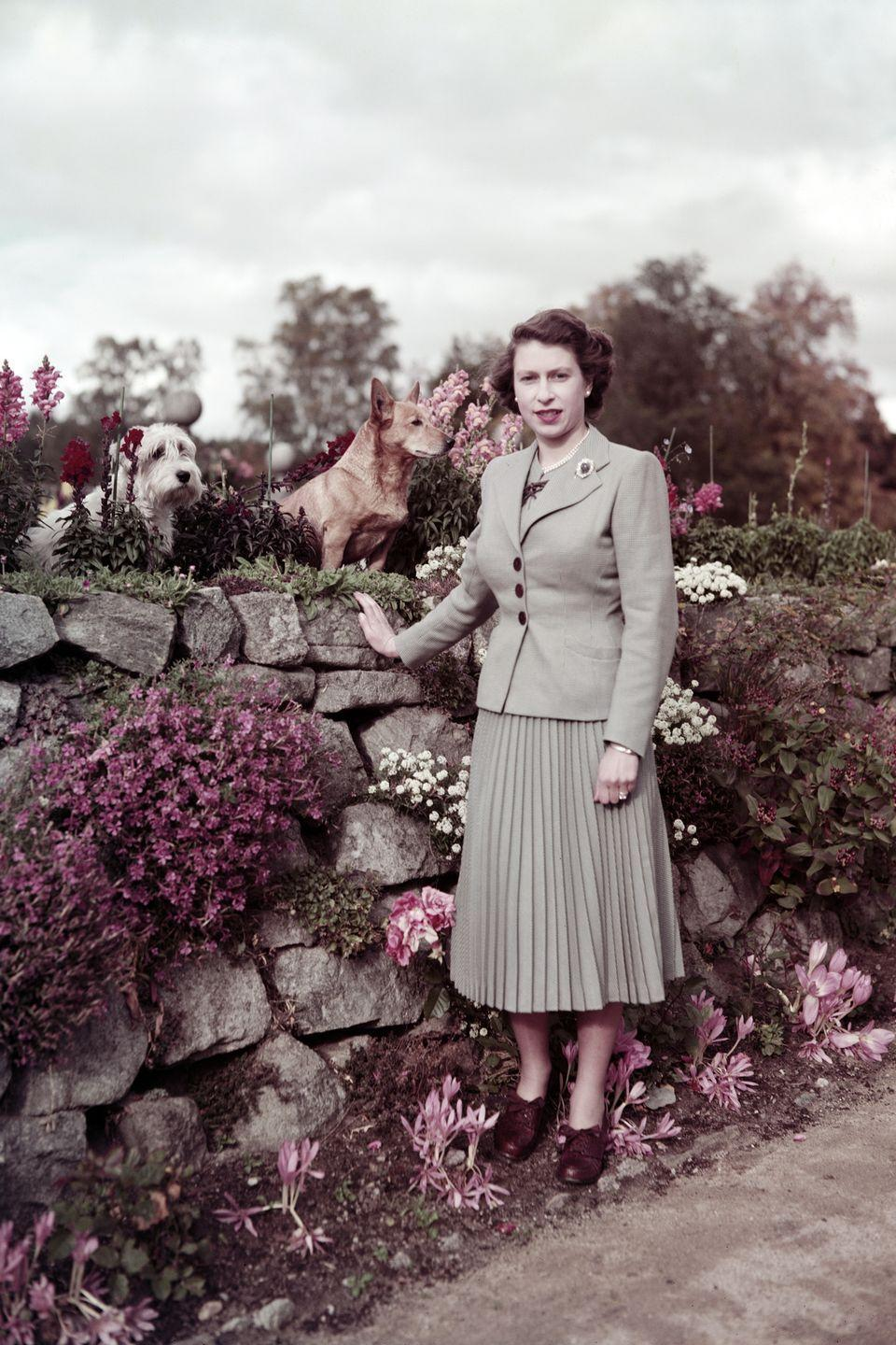 <p>Queen Elizabeth II with two dogs on the grounds at Balmoral Castle in Scotland.</p>