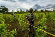 Colombia is the world's leading cocaine producer, making about 70 percent of the global supply