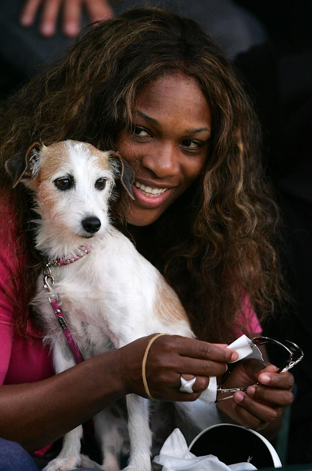 Serena Williams holds her dog Jackie, as her sister Venus Williams of the USA plays against Sania Mirza of India during the Bank of the West Classic tennis tournament on July 27, 2005 at Stanford University in Palo Alto, California.  (Photo by Jed Jacobsohn/Getty Images)