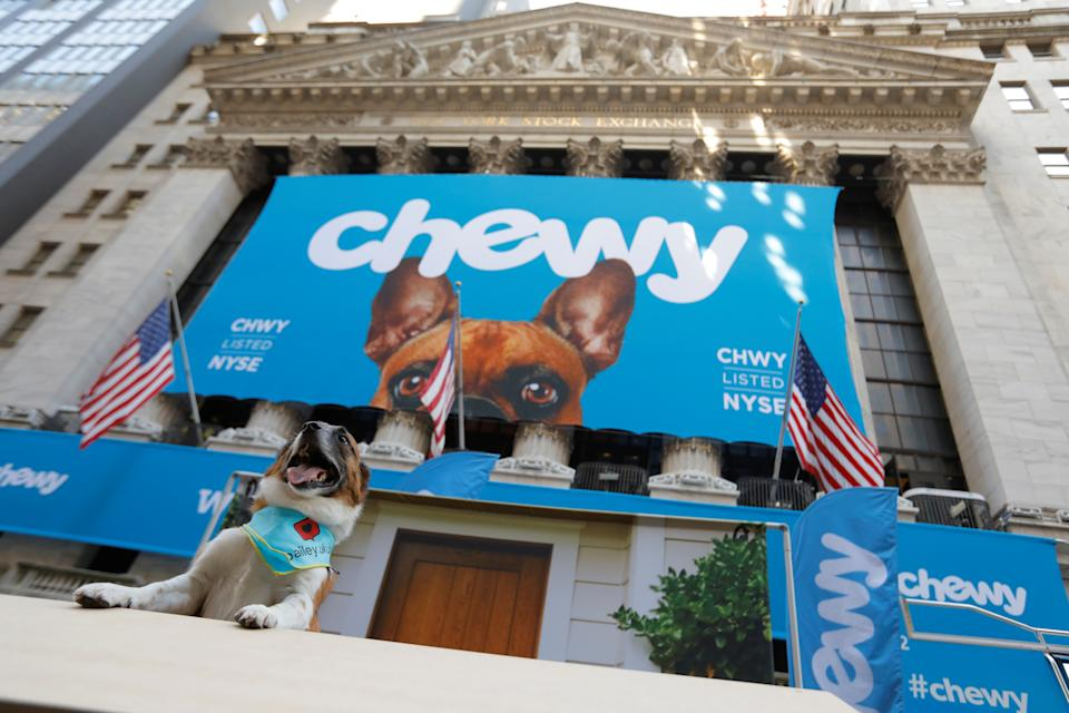 Bailey the rescue dog poses for a photo in a photo booth ahead of the Chewy Inc. IPO at the New York Stock Exchange (NYSE) in New York City, U.S., June 14, 2019. REUTERS/Andrew Kelly
