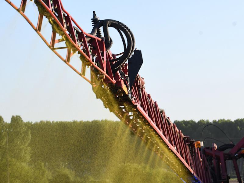 Germany Aims to Ban Glyphosate Usage in Weedkillers
