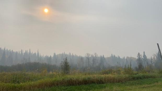 Smoke blankets the forest near Red Earth Cree Nation. (Don Somers/CBC News - image credit)