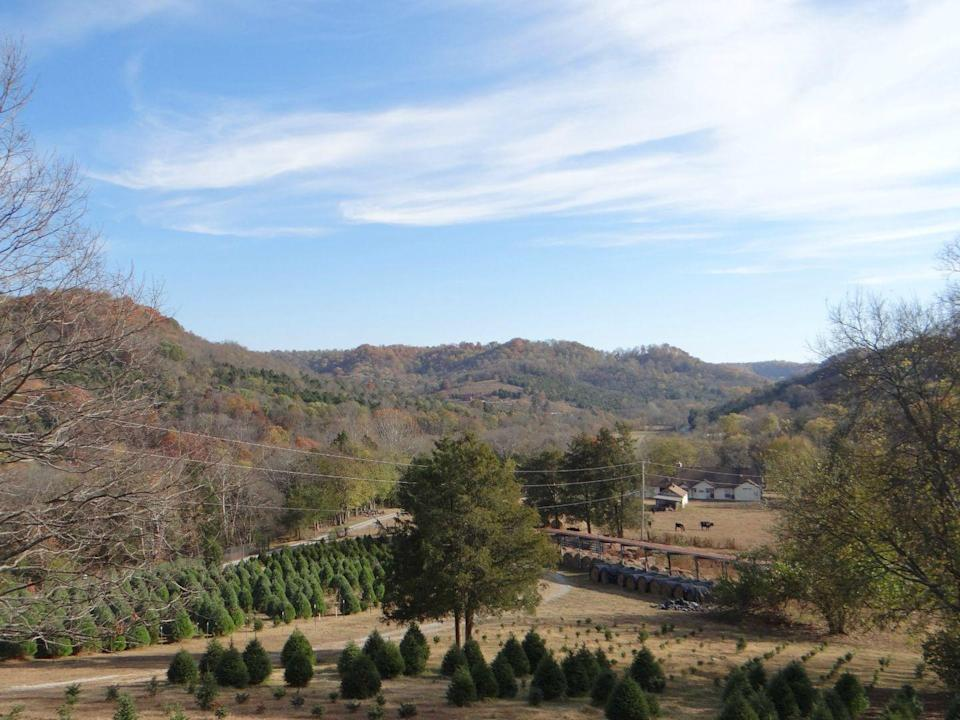 """<p><strong>Woodbury, Tennessee</strong></p><p>This is a one-stop shop for holiday fun. A massive treehouse, tractor-pulled hay ride wagon, and kids' craft room are just a few of the things you can expect at <strong><a href=""""https://wildwoodchristmastreefarm.com/hours-location/"""" rel=""""nofollow noopener"""" target=""""_blank"""" data-ylk=""""slk:Wildwood Christmas Tree Farm"""" class=""""link rapid-noclick-resp"""">Wildwood Christmas Tree Farm</a></strong>. Not to mention, there's free coffee for you and hot chocolate for the kids.</p>"""