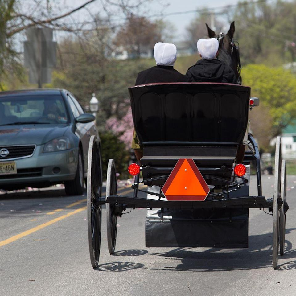 <p>If you happen to visit the Costco in Lancaster, Pennsylvania, you'll see some unique parking. Since the area has a large population of Amish, this Costco location has established parking spots for horses and buggies.</p>