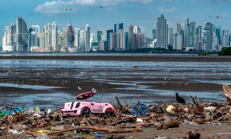 A double-crested cormorant sits amongst plastic waste at the beach of the Costa del Este neighborhood in Panama City.