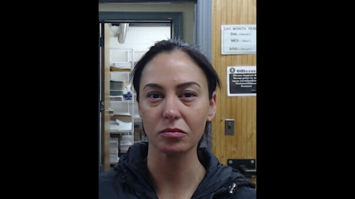 Erin Zilka, 35, was arrested and charged with a DUI after police say the car she was driving crashed into a box truck, killing a passenger in Illinois.