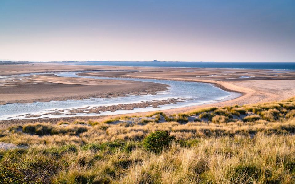 The mud flats at Budle Bay, part of the Lindisfarne National Nature Reserve - Istockphoto