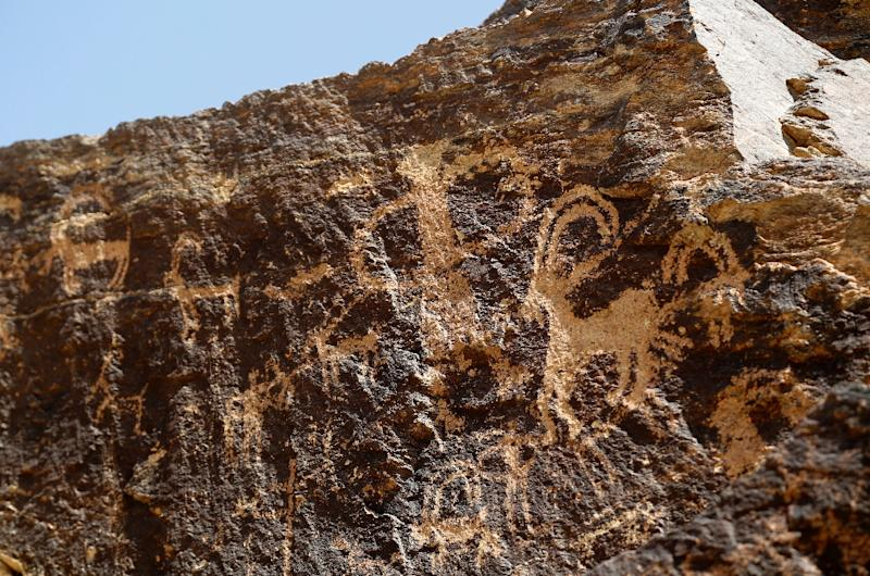 Ancient engravings of ibex deer in the hills outside of Khomein, Iran are some 4,000-years old (AFP Photo/ATTA KENARE)