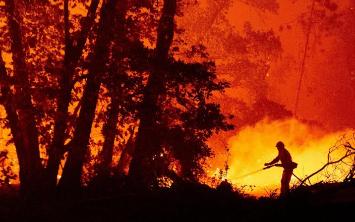 A firefighter douses flames as they push towards homes during the Creek fire in the Cascadel Woods area of unincorporated Madera County, California - JOSH EDELSON/AFP