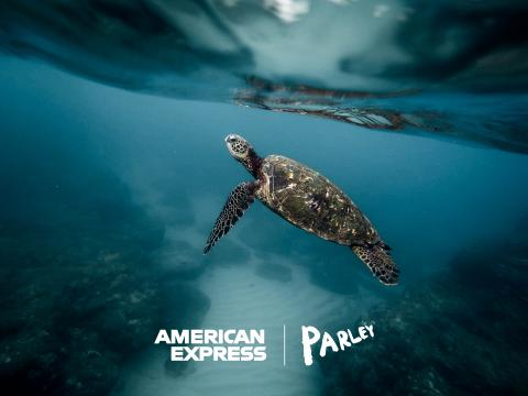 American Express and Parley for the Oceans Announce First-Ever Card Made Primarily with Reclaimed Plastic from Parley and Launch a Global Campaign to #BackOurOceans