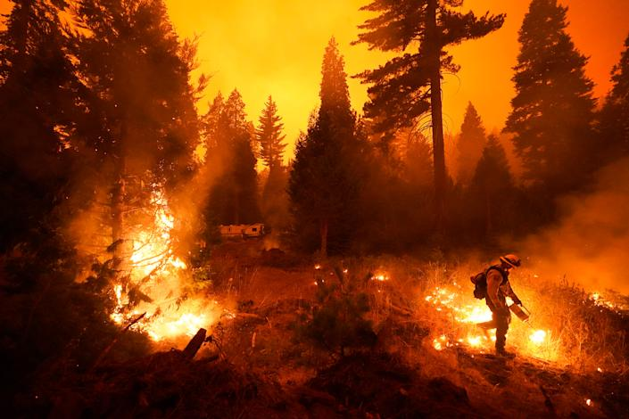 """Firefighter Ricardo Gomez, part of a San Benito Monterey Cal Fire crew, sets a controlled burn with a drip torch while fighting the Creek Fire in Shaver Lake, Calif., on Sept. 6, 2020. <span class=""""copyright"""">Marcio Jose Sanchez—AP.</span>"""