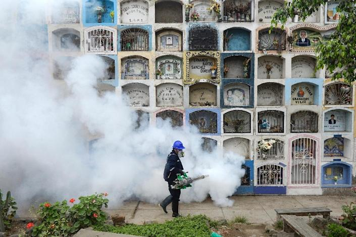 A specialist fumigates for Zika-carrying mosquitoes on the outskirts of Lima, Peru on January 15, 2016 (AFP Photo/Ernesto Benavides)