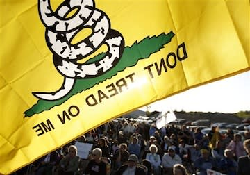 don't tread on me flag at health-care protest