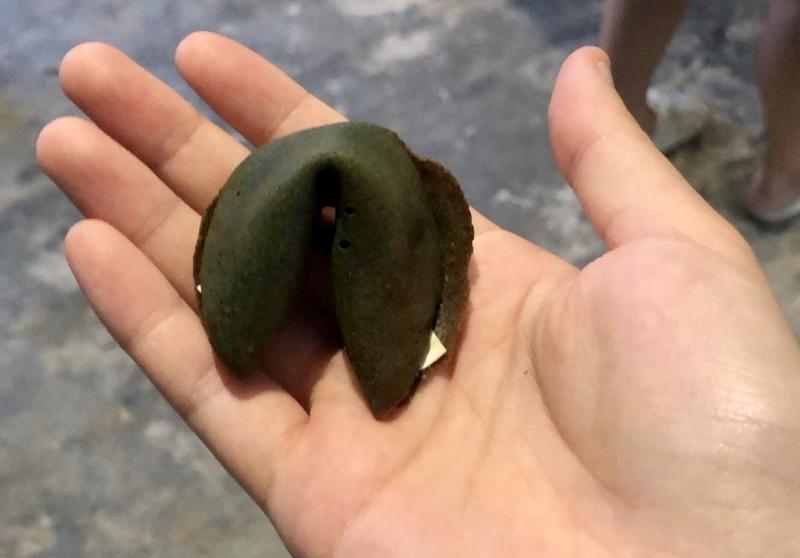 Fortune cookie made from spirulina, as known as algae. (PHOTO: Sheila Chiang/Yahoo Lifestyle Singapore)