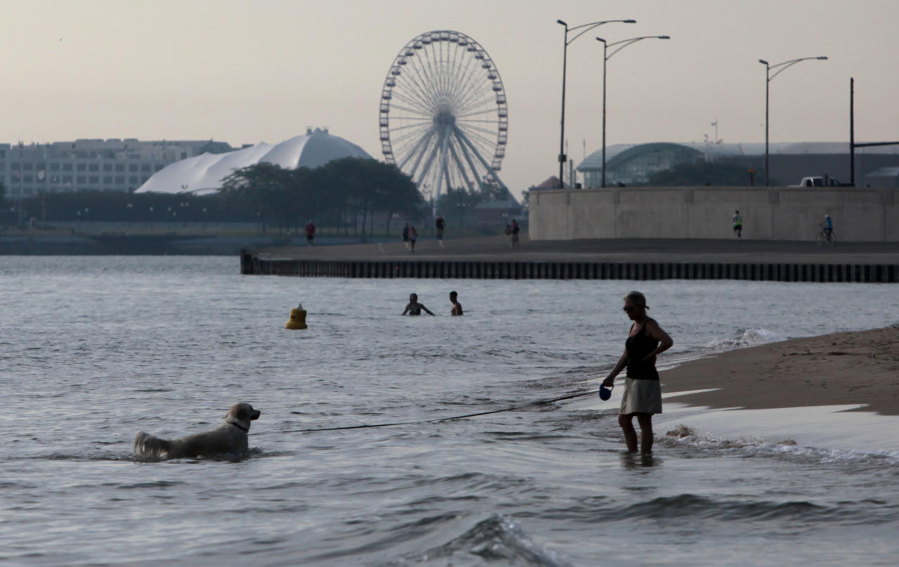 "A dog takes an early morning dip on the shore of Lake Michigan Wednesday, July 20, 2011 in Chicago, as Navy Pier is shown in the background. Much of the United States is trapped under a heat ""dome"" caused by a huge area of high pressure that's compressing hot, moist air beneath it, leading to miserable temperatures in the mid-90s to low 100s and heat-index levels well above 100 degrees. (AP Photo/Kiichiro Sato)"