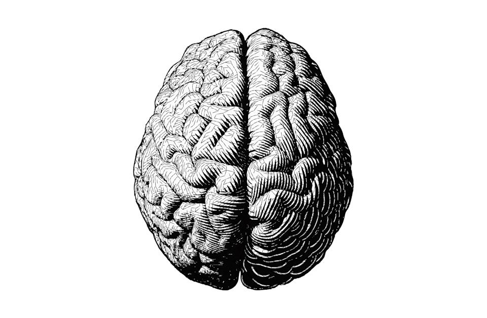 Monochrome engraving brain illustration in top view with stylized triangular wireframe isolated on white background