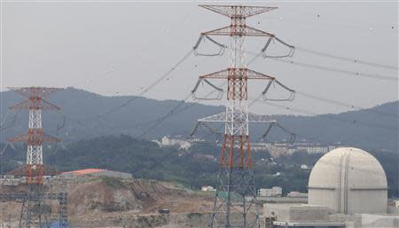 The new Shin Kori No. 4 reactor of state-run utility Korea Electric Power Corp (KEPCO) is seen in Ulsan, about 410 km (255 miles) southeast of Seoul, September 3, 2013. REUTERS/Lee Jae-Won