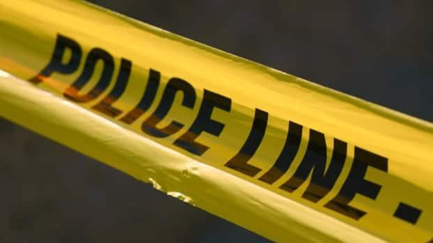 Much of the drop in the crime rate was in property crime. (Rafferty Baker/CBC - image credit)