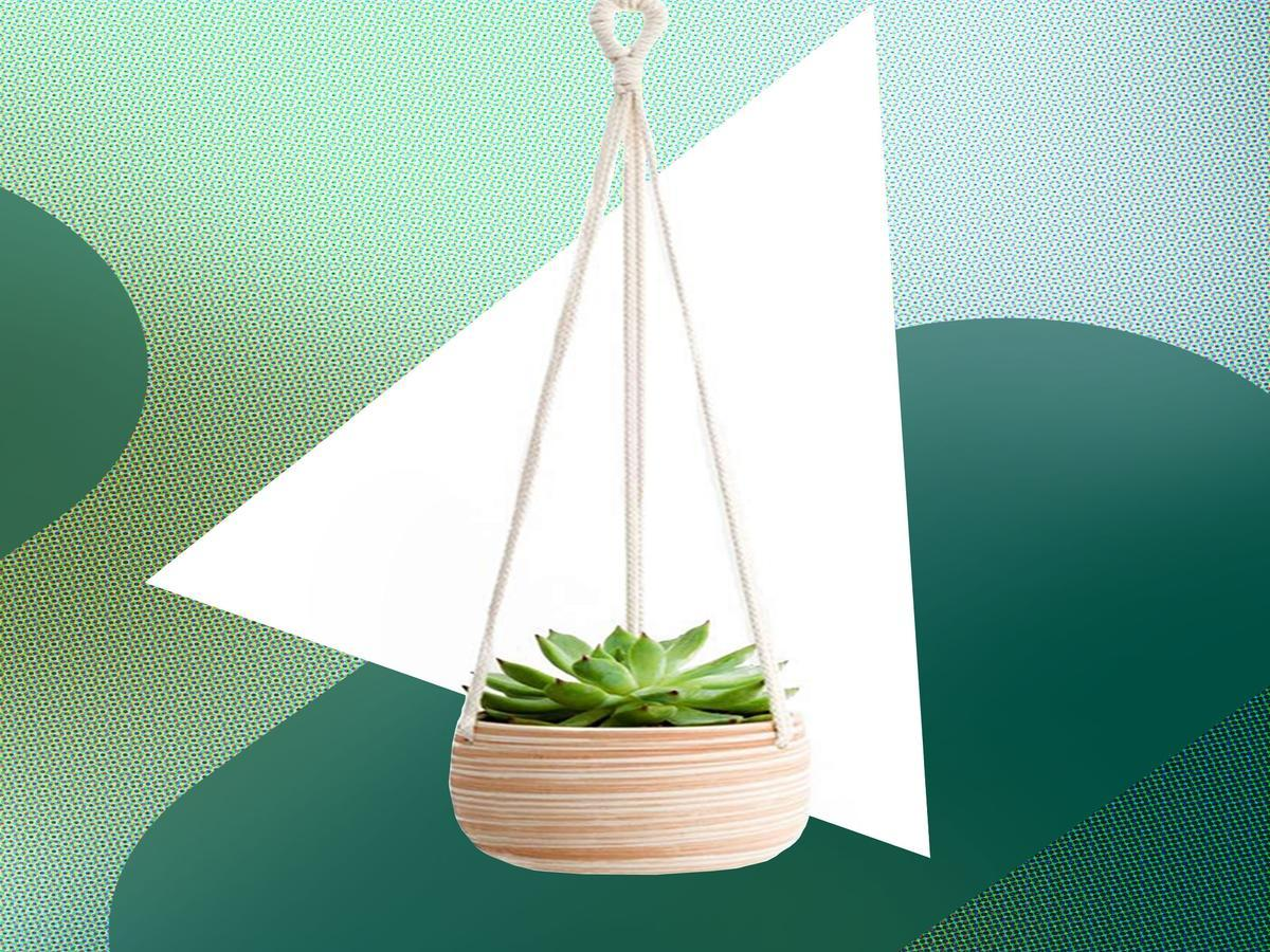 These Hanging Planters Will Actually Breathe Life Into Your Home