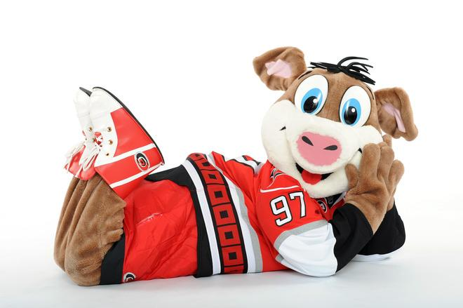 Stormy, Mascot For The Carolina Hurricanes, Poses Getty Images