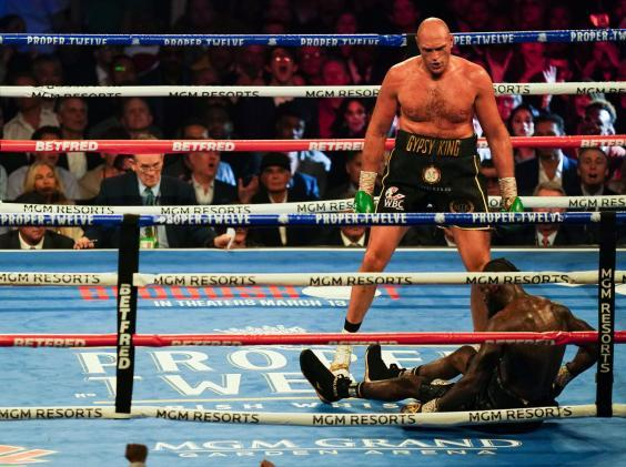Tyson Fury stopped Deontay Wilder last month (Rex)