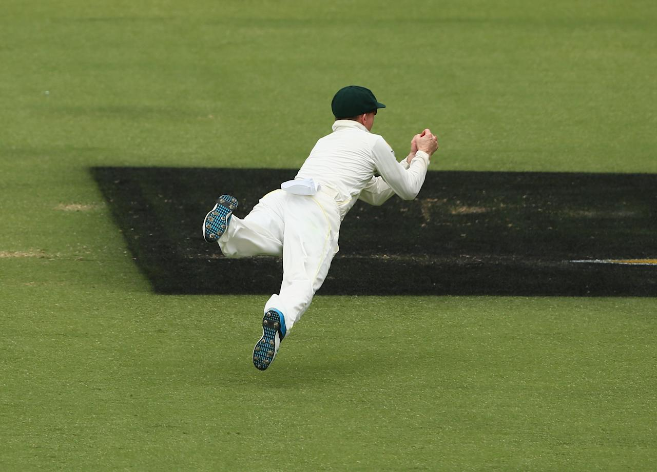 PERTH, AUSTRALIA - DECEMBER 17: Chris Rogers of Australia dives to take a catch to dismiss Tim Bresnan of England during day five of the Third Ashes Test Match between Australia and England at WACA on December 17, 2013 in Perth, Australia.  (Photo by Robert Cianflone/Getty Images)
