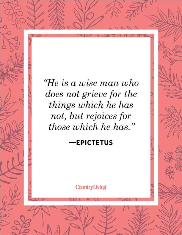 """<p>""""He is a wise man who does not grieve for the things which he has not, but rejoices for those which he has."""" </p>"""
