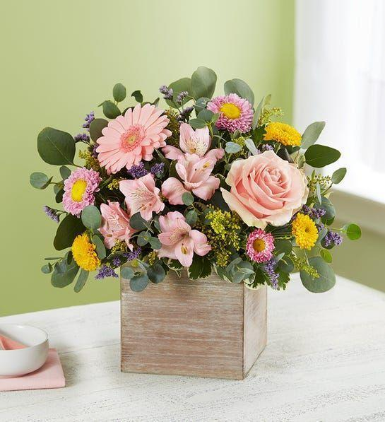 """<p><strong>1-800-Flowers</strong></p><p>1800flowers.com</p><p><strong>$49.99</strong></p><p><a href=""""https://go.redirectingat.com?id=74968X1596630&url=https%3A%2F%2Fwww.1800flowers.com%2Fspring-sentiment-bouquet-179053&sref=https%3A%2F%2Fwww.goodhousekeeping.com%2Fholidays%2Fmothers-day%2Fg26977276%2Fbest-mothers-day-flower-delivery-services%2F"""" rel=""""nofollow noopener"""" target=""""_blank"""" data-ylk=""""slk:BROWSE ARRANGEMENTS"""" class=""""link rapid-noclick-resp"""">BROWSE ARRANGEMENTS</a></p><p><strong>In a special flower Lab test, the <a href=""""https://www.goodhousekeeping.com/institute/about-the-institute/a19748212/good-housekeeping-institute-product-reviews/"""" rel=""""nofollow noopener"""" target=""""_blank"""" data-ylk=""""slk:Good Housekeeping Institute"""" class=""""link rapid-noclick-resp"""">Good Housekeeping Institute</a> experts found that 1-800-Flowers arrangements were the only flowers that lasted longer than a week</strong>. The retailer offers a broad selection of <a href=""""https://www.goodhousekeeping.com/home/gardening/g32673850/best-perennial-flowers-plants/"""" rel=""""nofollow noopener"""" target=""""_blank"""" data-ylk=""""slk:flowers for every occasion"""" class=""""link rapid-noclick-resp"""">flowers for every occasion</a> and budget: from <a href=""""https://go.redirectingat.com?id=74968X1596630&url=https%3A%2F%2Fwww.1800flowers.com%2Fcheapflowers&sref=https%3A%2F%2Fwww.goodhousekeeping.com%2Fholidays%2Fmothers-day%2Fg26977276%2Fbest-mothers-day-flower-delivery-services%2F"""" rel=""""nofollow noopener"""" target=""""_blank"""" data-ylk=""""slk:cheap bouquets"""" class=""""link rapid-noclick-resp"""">cheap bouquets</a> that start from $20 to more extravagant flowers. They even have dedicated shopping sections for <a href=""""https://go.redirectingat.com?id=74968X1596630&url=https%3A%2F%2Fwww.1800flowers.com%2Fsamedaydelivery&sref=https%3A%2F%2Fwww.goodhousekeeping.com%2Fholidays%2Fmothers-day%2Fg26977276%2Fbest-mothers-day-flower-delivery-services%2F"""" rel=""""nofollow noopener"""" target=""""_blank"""" data-ylk=""""slk:same-day delivery"""" class=""""link rapid-no"""