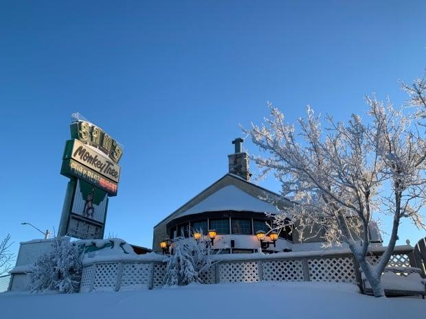 The co-owner of Yellowknife's The Monkey Tree Pub fears a lull in patrons will drag on if the chief public health officer doesn't come down hard and order the city's non-essential businesses to close for two weeks.  (Sidney Cohen/CBC - image credit)