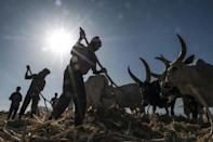 Tigray already faced formidable food security challenges before the conflict began