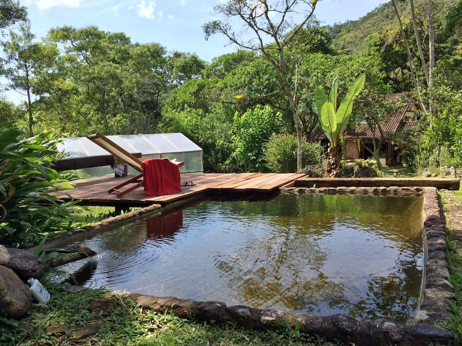 <p>While the lodge's pool may not be massive, it more than makes up for it with the poolside view. (Airbnb) </p>