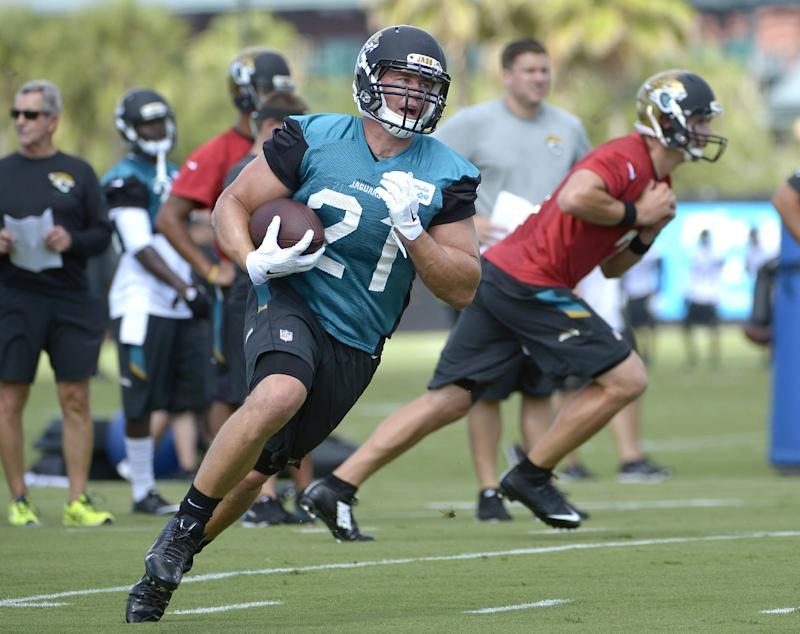 Jaguars RB Gerhart 'ready to carry the load'