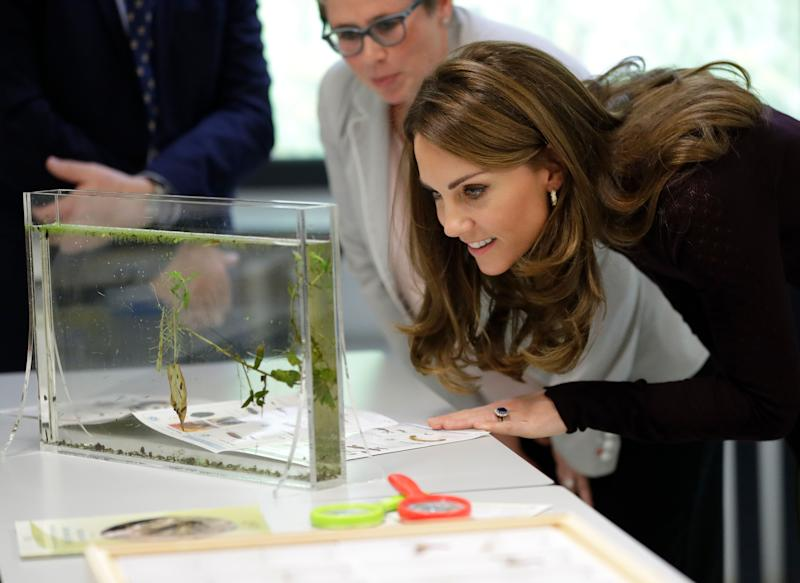 Kate is a patron of the Natural History Museum. (Photo: WPA Pool via Getty Images)