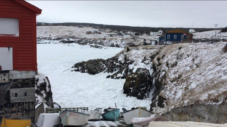 Stay off the ice: Sister of Pouch Cove drowning victim urges people to be cautious