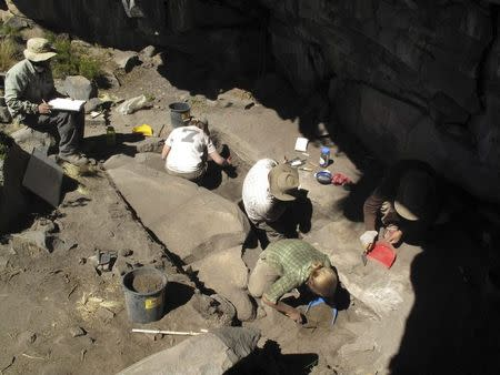 Excavations at Cunchaicha rock shelter in Peruvian Andes is shown in this handout image released on October 22, 2014. REUTERS/Kurt Rademaker/Handout via Reuters