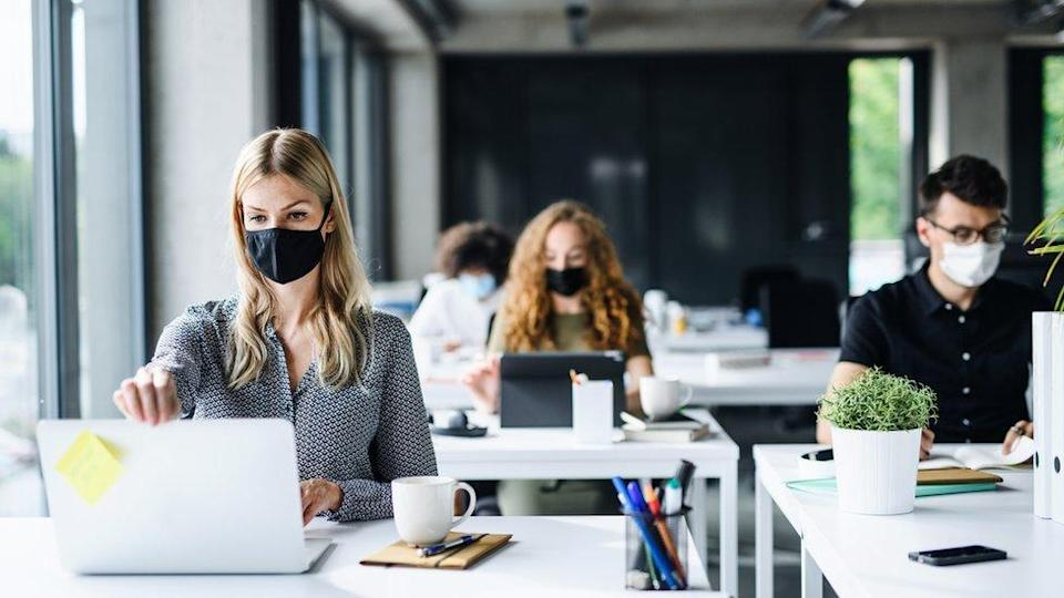 Young office workers masked up look at their laptops in an office setting