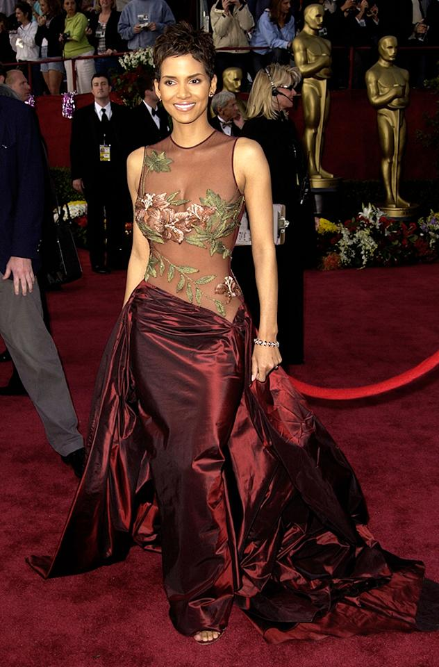 Halle Berry (Photo by SGranitz/WireImage)