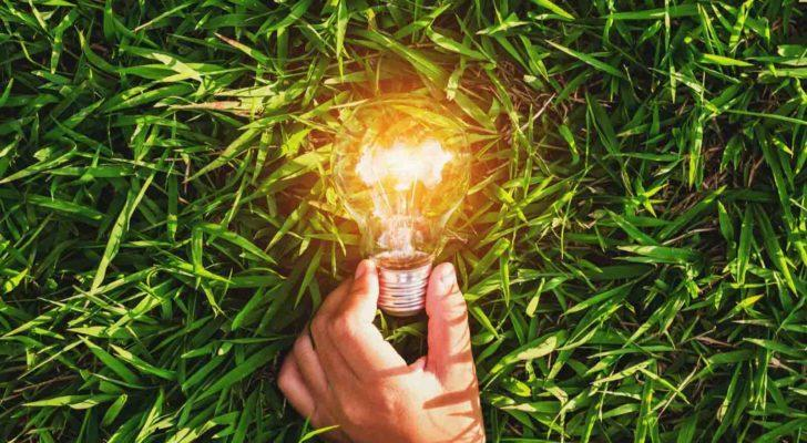 Image of a person holding a lit lightbulb