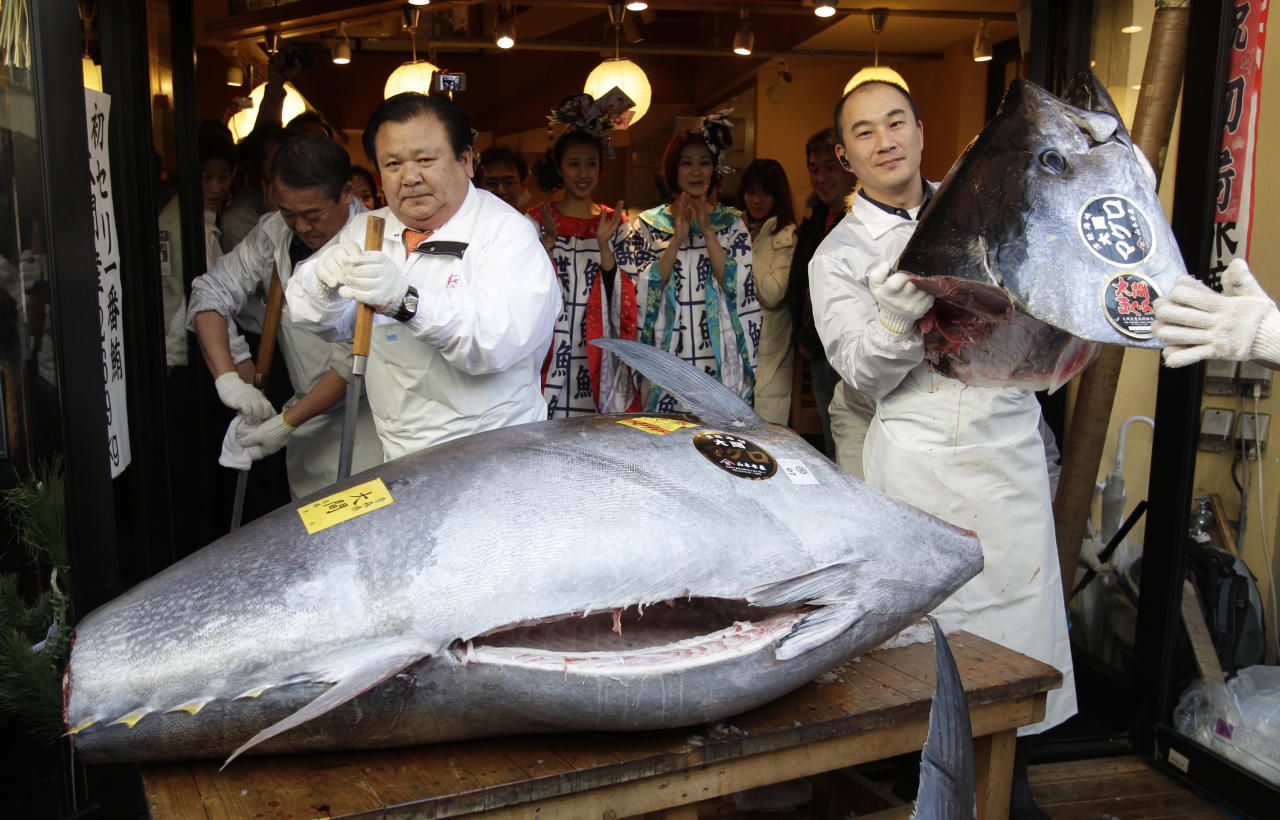 Kiyoshi Kimura, president of Kiyomura Co., left, cuts a bluefin tuna in front of his Sushi Zanmai restaurant near Tsukiji fish market in Tokyo Thursday, Jan. 5, 2012. The bluefin tuna caught off northeastern Japan fetched a record 56.49 million yen, or about $736,000, in the first auction of the year at the fish market. The tuna was caught off Oma in Aomori prefecture and just north of the coast that was battered by the March 11 tsunami. (AP Photo/Shizuo Kambayashi)
