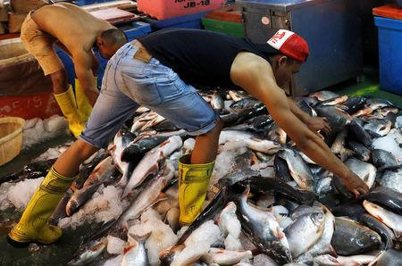Fishermen sort out their catch at a wet market in Malaysia's southern city of Johor Bahru April 26, 2017. REUTERS/Edgar Su